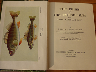 Fishes British Isles